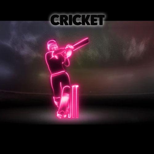 Cricket Court